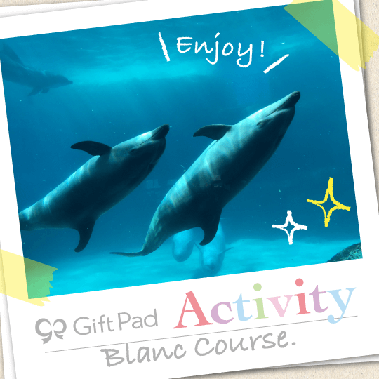 GiftPad Activity Blanc(ブラン)コース
