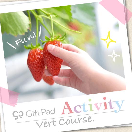 GiftPad Activity Vert(ヴェール)コース