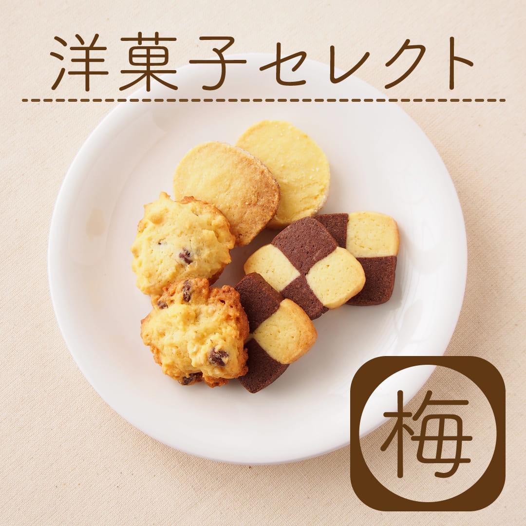 手土産やお礼に 洋菓子セレクト 梅コース