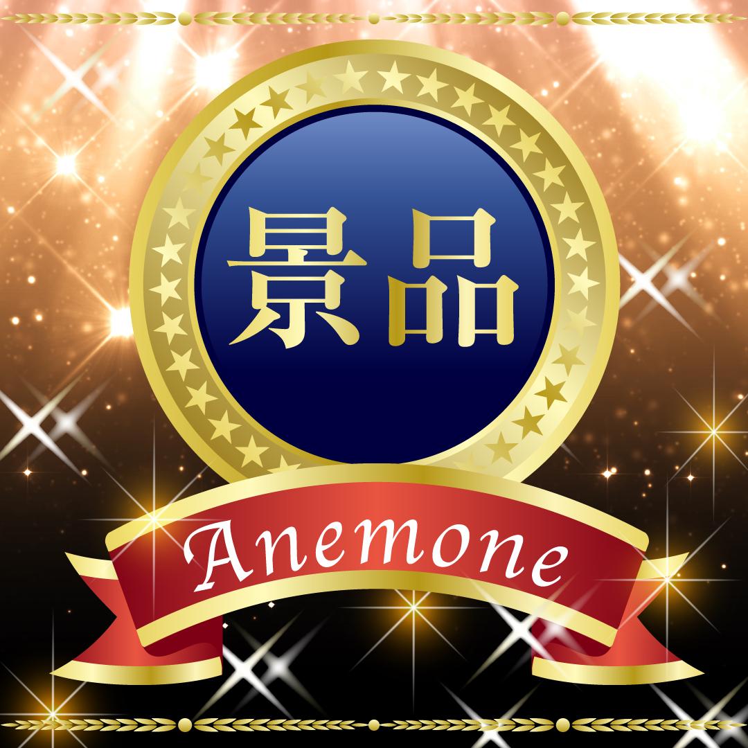 景品(表彰・コンペ・パーティなど) Anemone(アネモネ)コース