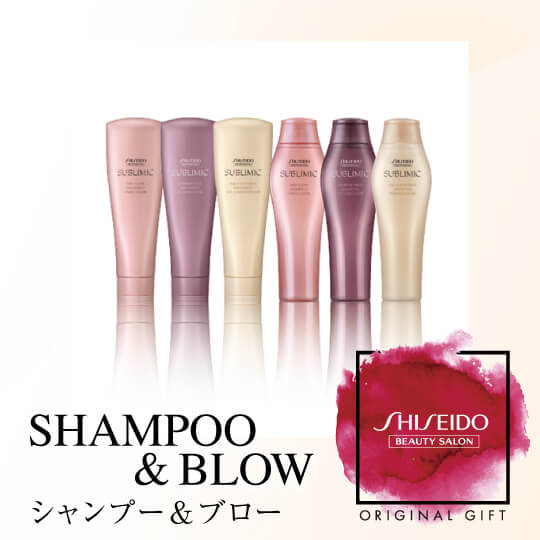 資生堂美容室 SHAMPOO & BLOW〔PRODUCTS SELECT〕(60分)