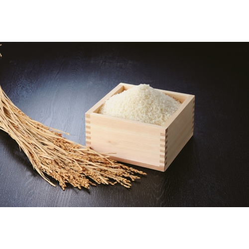 特別栽培米 ゆめぴりか 5kg