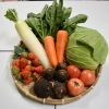 地物!季節の野菜・果物セット