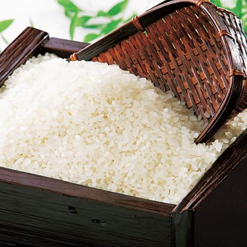 特別栽培米 さゆり米 10kg