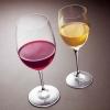フランス産 紅白ワインセット