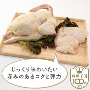 【川俣町農業振興公社】川俣シャモ肉セット