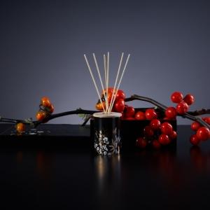 DEICA 泥華香堂ディフューザー 白梅の香り WHITE JAPANESE APRICOT