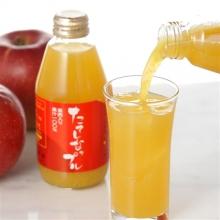 長野県 たてしなップルジュース<br>果肉入り10本セット
