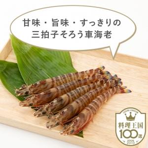 【仁尾産商株式会社】活オリーブ車海老230g