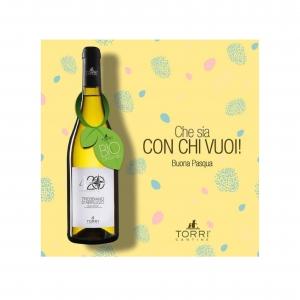 完熟したブドウを手摘みで選定するコストと時間を掛けた白ワイン! トッリ社/トレッビアーノ・ダブルッツォ 420