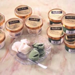 知る人ぞ知るアイスクリーム 10個セット