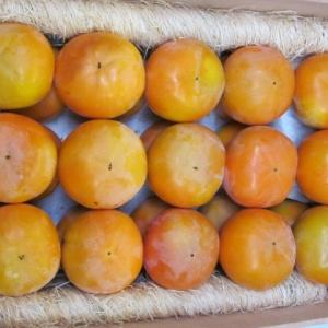 香川県産 極上 【富有柿 7.5kg】 2Lサイズ