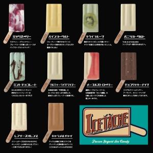 ICETACHEアイスキャンディー10個セット