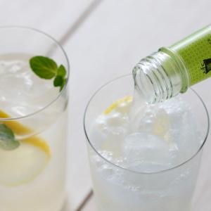 ジンジャーエール&ジュース飲み比べギフト