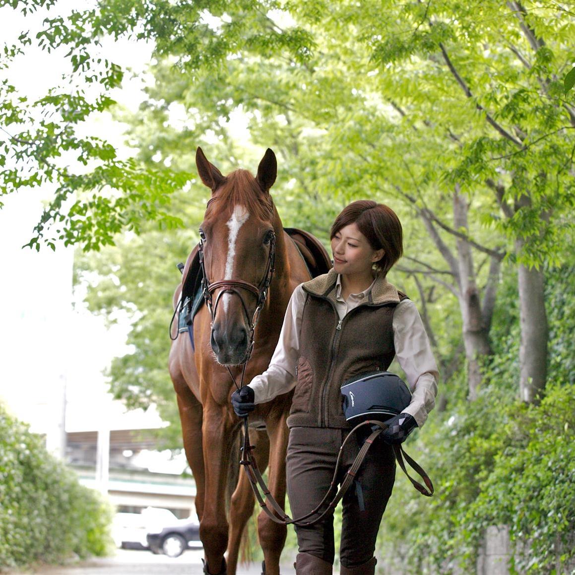 乗馬クラブクレイン 乗馬体験 2回 1名様