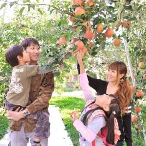 果実の里 原田農園 りんご狩り(8月下旬~12月上旬) 2名様
