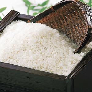 特別栽培米さゆり米 10kg