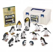 カロラータ 立体図鑑 ペンギンボックス