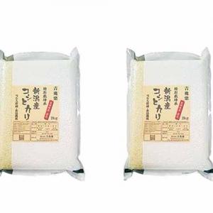 雪蔵仕込 特別栽培米新潟産コシヒカリ