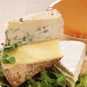 世界のチーズ