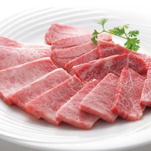 弥川畜産・佐賀産和牛焼肉 500g tl18-100-10