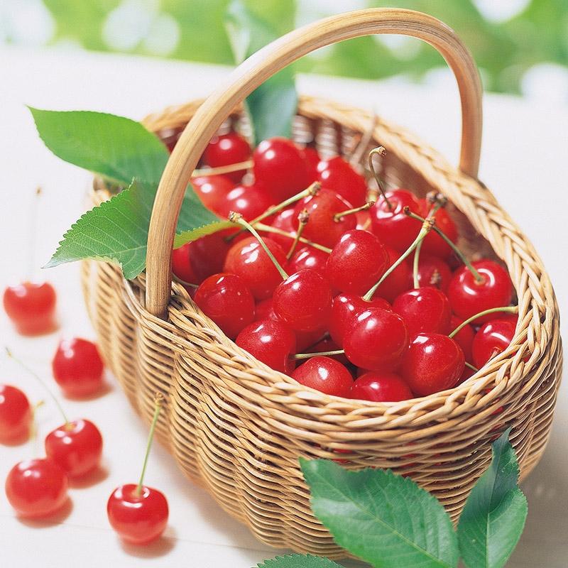 旬の味 フルーツ4点A ①③⑤⑧ 200-1-1358