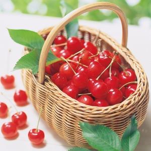 旬の味 選べるフルーツ(頒布会)A 8-300-1-12589