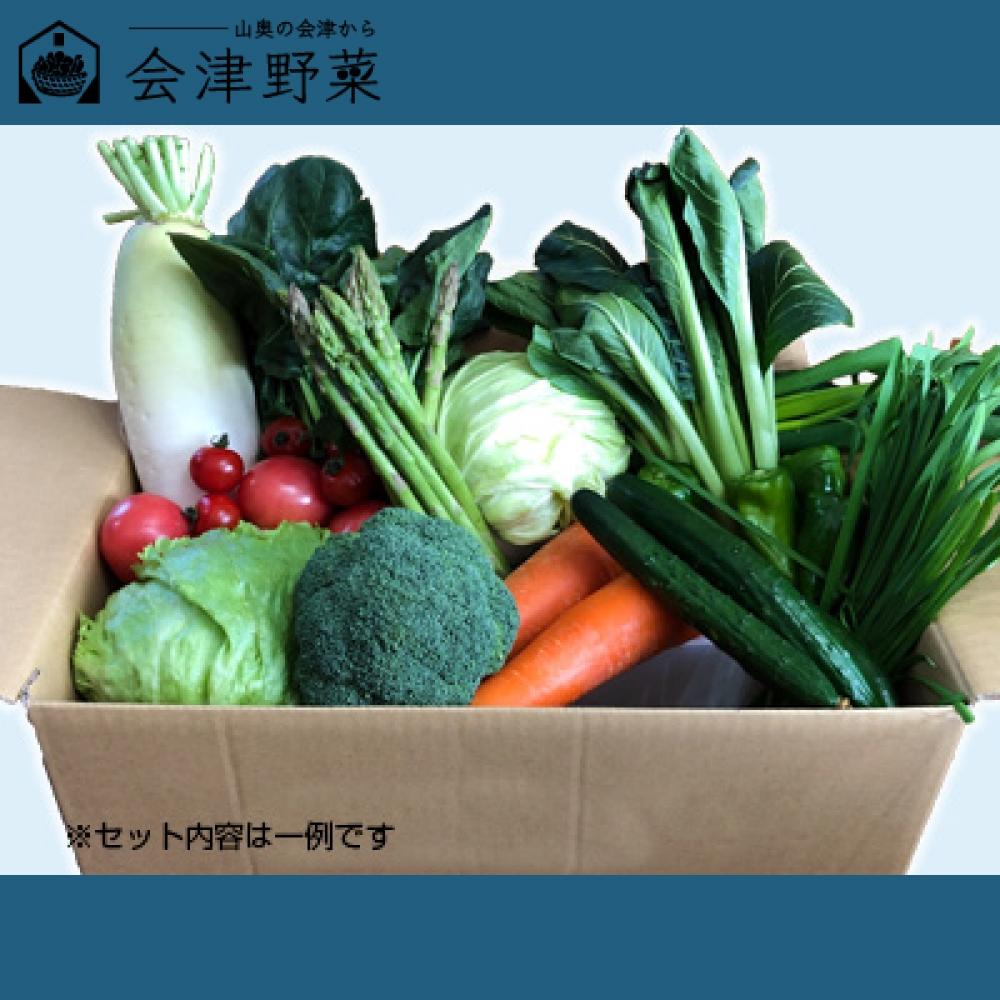 西会津ミネラル野菜セット(大)+西会津特産品