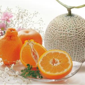 マスクメロンと冬のフルーツ